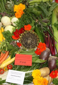 Best in show 2011 - Display of home grown vegetadles