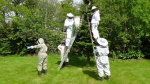 Tarland Bee Group